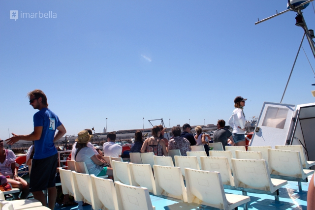 Aventura Marina Dolphin and Whale Watching Trip in Tarifa