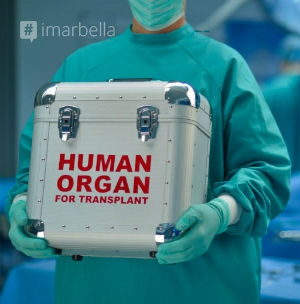 Spain Breaks Own Transplant Record
