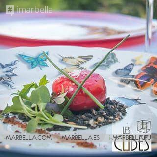 Les Cubes Marbella on Instagram: Gallery