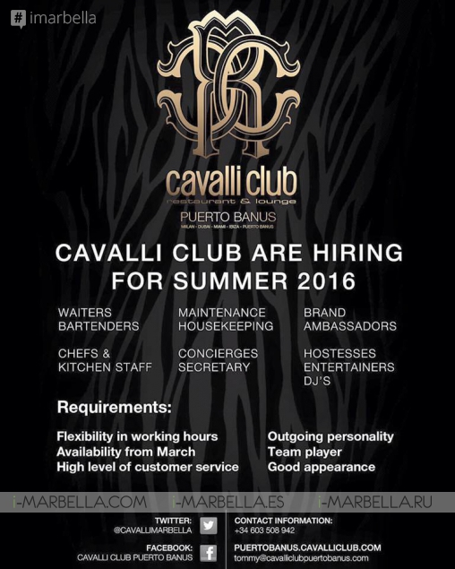 Cavalli Club is Hiring for Summer 2016!