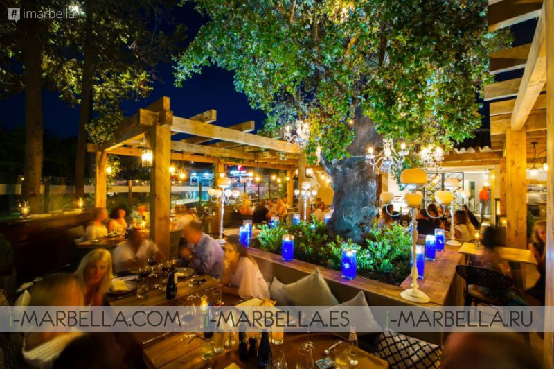 OAK Garden & Grill Review by La Marbellina