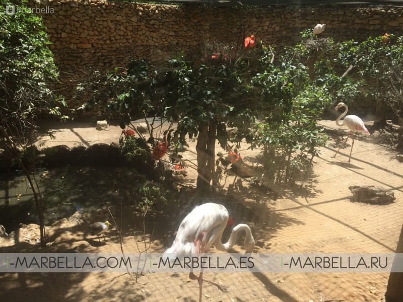 Annika's Blog: Castellar Zoo-Animal Rescue Centre