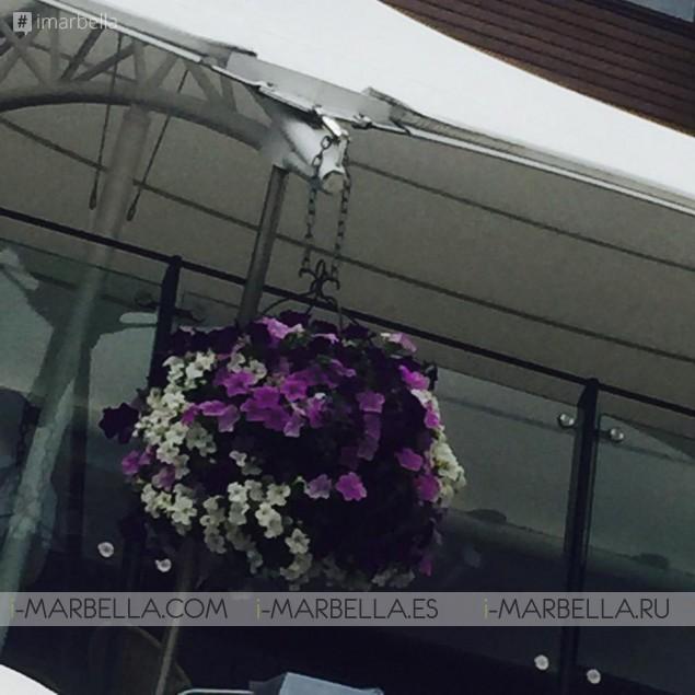 Manolo Santana Continues Celebration of 50 Years of Wimbledon Triumph