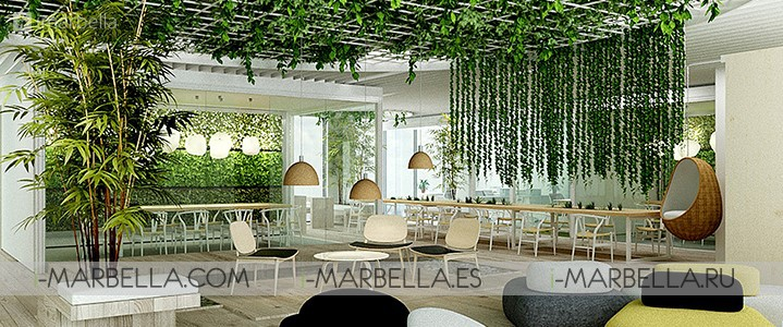 Our Space Coworking Launches in Marbella