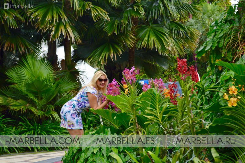 Annika Urm Blog: Cloud Forest at gardens by the bay in Singapore impressed me the most
