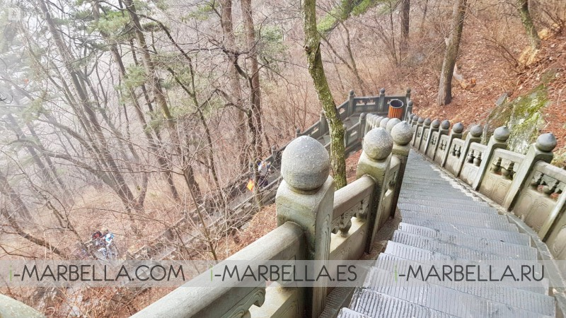 Annika Urm Blog: Mt. Mang Mt. Wudang mountains conquering and Business meetings in China  VOL. 3