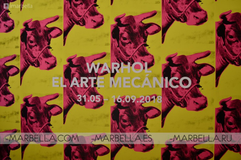 Malaga Picasso Museum 'The mechanical Art' Andy Warhol 2018