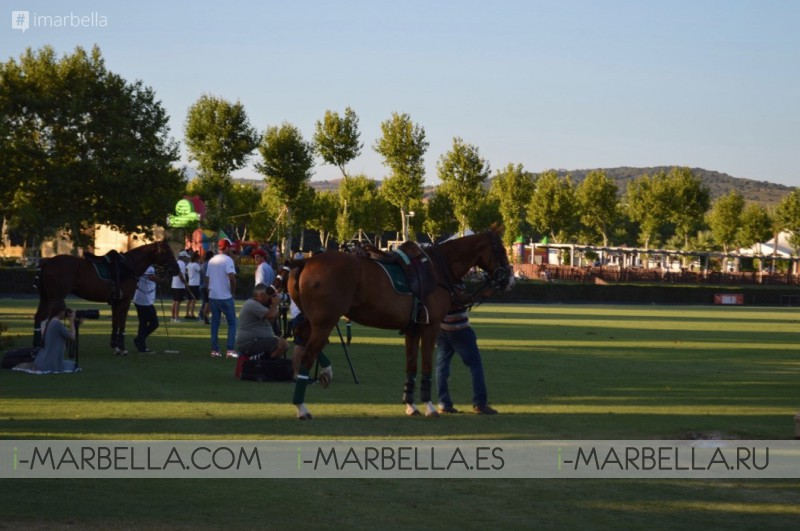 Five weeks of high altitude Polo sports  @Santa Maria Polo Club July 25 to Sept 1, 2018