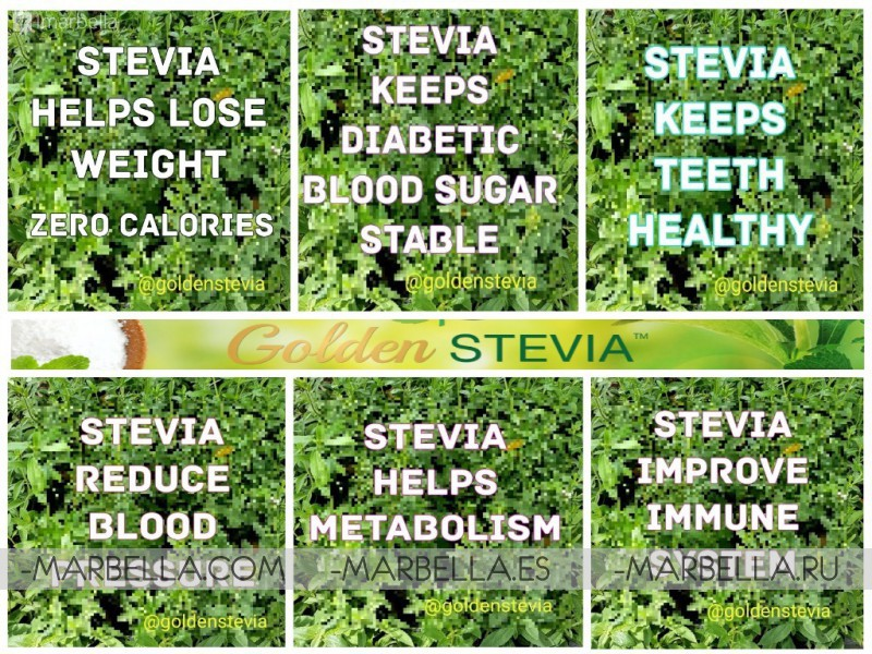 Golden Stevia powder as a Sugar Substitute: zero calories, healthy, and safe.