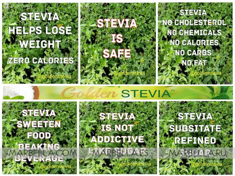 Golden Stevia powder as a Sugar Substitute: low calories, healthy, and safe.