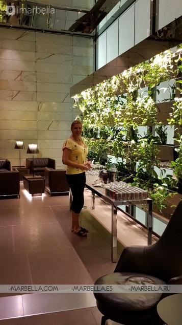 Annika Urm Blog: Finnair, Qatar Air, Oneworld are one of the best 2018