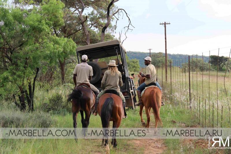 Safari en Sudáfrica con Out in Africa Encounters - Diario de Félix Ramos Vol.1