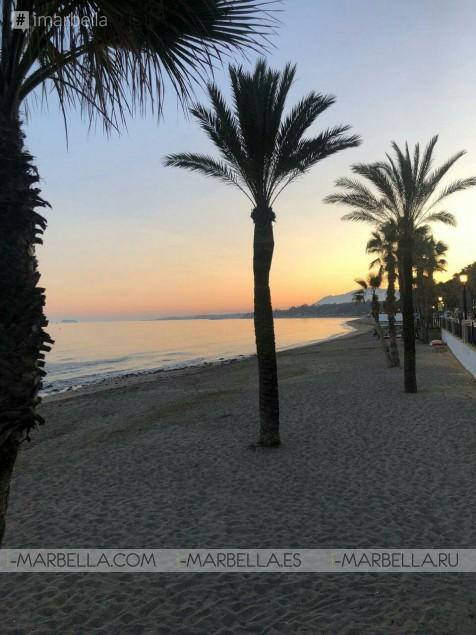 Karina Miller Blog 16: Marbella is a paradise!