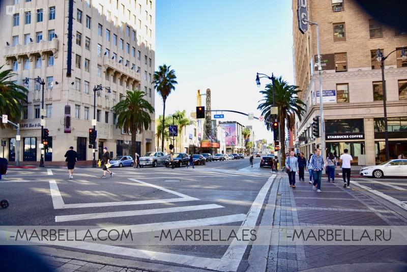 Annika Urm Blog: Los Angeles walk of fame, Santa Monica & Mega Success in 24h – November 2019