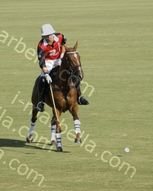 Polo Gold Cup, Los Pinos, Sotogrande, Cadiz
