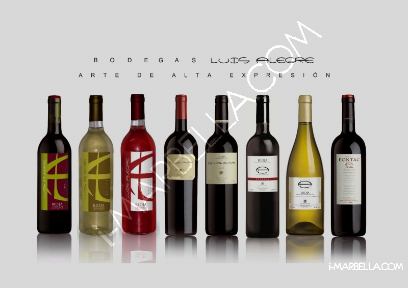 Wine Tasting at Santiago's Marbella with Bodegas Luis Alegre