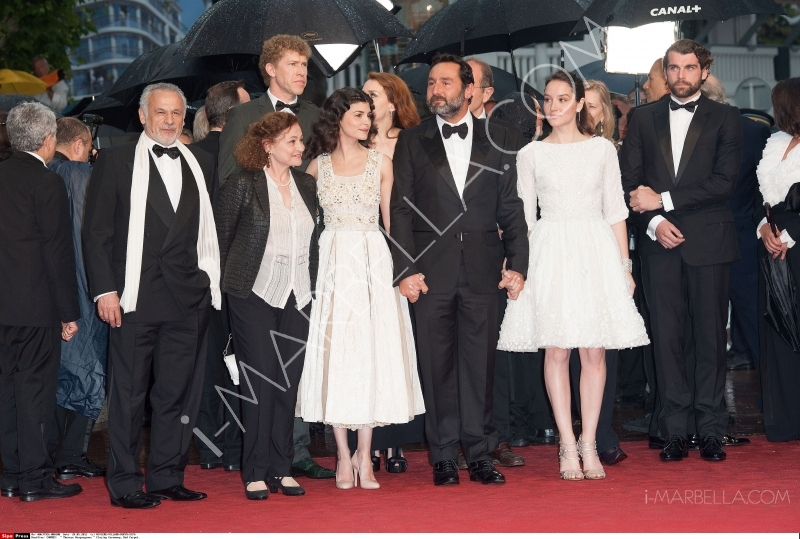 Most Beautiful Dresses of Cannes Film Festival